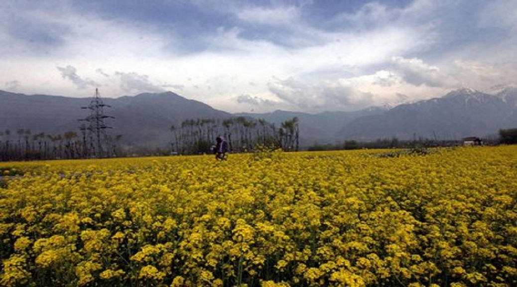 Trajectory of Land Reforms in J&K and its Outcomes
